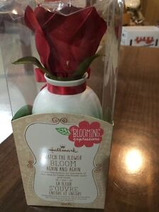 Hallmark Blooming Expressions - Red Rose