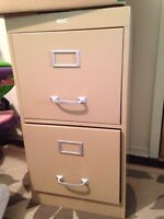 Filing Cabinet - my place is overflowing
