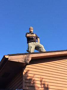 Home Inspection or WETT (Wood burning) Inspector required? London Ontario image 2