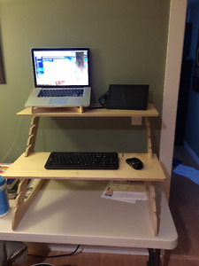 Standing Desk - Adjustable with Laptop stand, convert your desk!