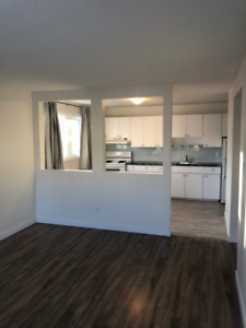 REST OF JAN FREE RENOVATED CLEAN SAFE 1 BEDROOM APARTMENT