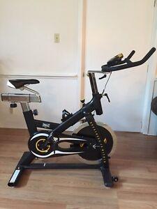 Everlast bike