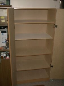 PANTRY , BOOKCASE , CLOSET or STORAGE CABINET