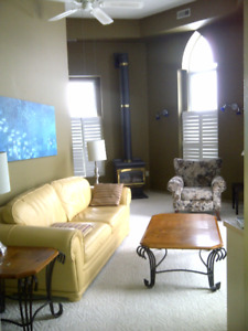 Fully FURNISHED large 1 bdrm apartment rented by the month.