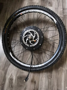 1500 w eBike Motor with inferno 29 rim and disk brake