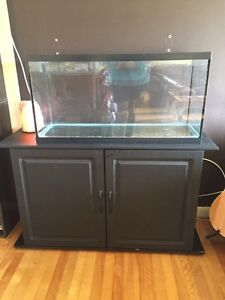 Hagen fish tank and stand