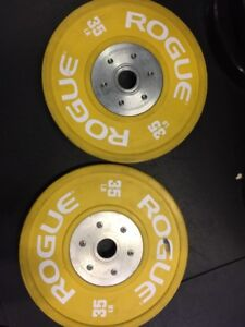 Rogue Fitness 2.0 Training Plates 35lbs bumper competition