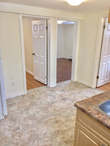 Bright, Clean, Renovated 2 Bedroom Close to Bus Route and Parks