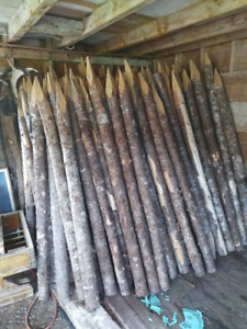 Fence Posts / Stakes