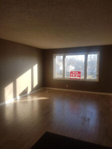 Newly Renovated 3 Bdrm Main Floor on 914 Dewdney Ave E