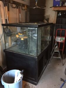 Starfire tank stand and canopy 200gal