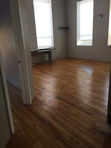 1 Bedroom Apartment Downtown Kitchener Kitchener / Waterloo Kitchener Area image 1