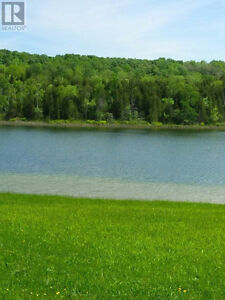 A Tranquil Oasis minutes from Lucknow London Ontario image 6