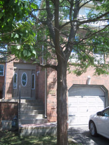newly renovated great location 1950 per month