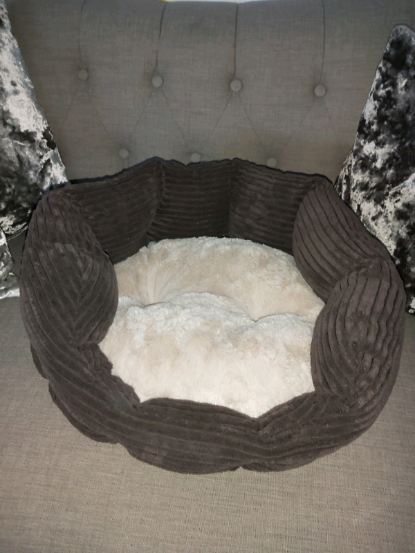 Brand New Cats Bed From Pets At Home In Wokingham Berkshire Gumtree
