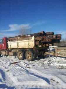 BIRCH Firewood - Wholesale Prices