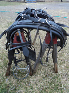 NEW PRICE! Harness maker crafted Biothane Driving Harness Belleville Belleville Area image 3