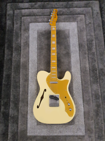Custom Built Telecaster Thinline