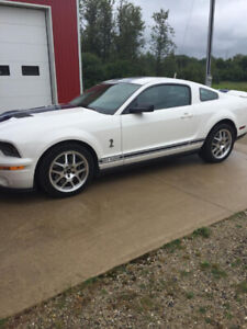 2007 Ford Mustang GT500 Shelby Cobra