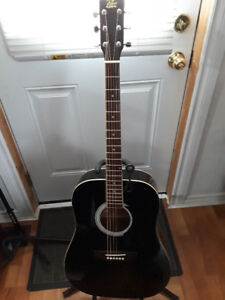 Rogue Acoustic Guitar with Soft Case