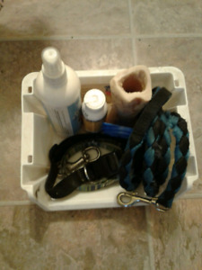 Puppy Bundle-leash,  2 Collars, Chew, Training aid and more!