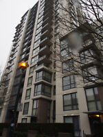 1-Bedroom Apartment with Separate Entrance near Joyce Station