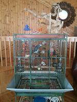 grosse cage pour perroquet