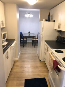 Room for rent in a spacious 2 bedroom appartment