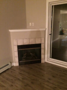 For Rent! 2 Bed 2 Bath + fireplace + Open Concept Kitchen