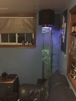 One of a kind bar - living room fish tank