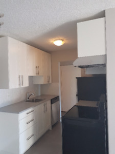 Newly Renovated Large 1 Bedroom & Den in Lower Lonsdale