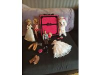 Barbie ultimate closet and more