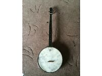 Vega banjo little wonder 1920s