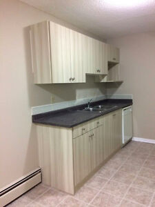 AMAZING 2 BEDROOM AVAILABLE ON MARCH, FREE TELUS 1 YEAR LEASE