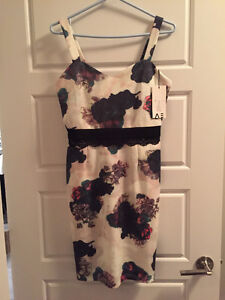 Floral / holiday dress. Brand new with tags!
