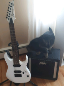 Ibanez RG7421 and Peavy Amp