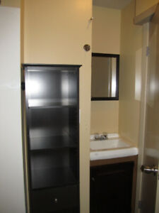 Bright 1 Bedroom Apartment, Available Dec 1, 2019