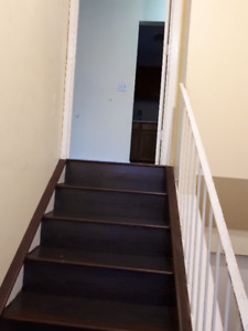 3 bed room MAIN LEVEL  for rent