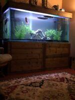 300g fish tank.