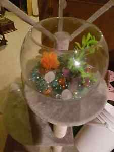 Betta glass fish bowl and ornaments