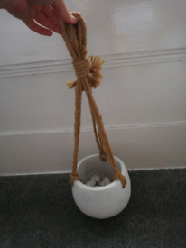 Hanging plant pot and hooks