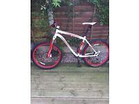Specialized Rockhopper Bike