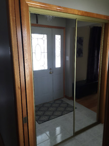Mirrored sliding closet door