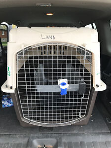 Two Dog Kennels, excellent condition.