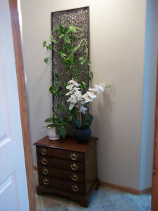 Real Plant with planter and Pier 1 wall decor