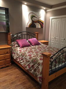 Large one bedroom and one bath, ground level new basement Suite