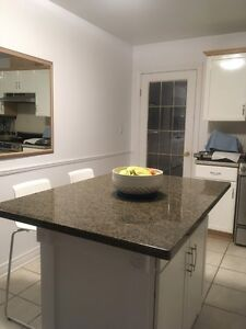 GRANITE island TOPS in specific sizes & other pieces to CLEAR