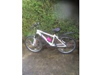 Apollo Jewel Bike for sale also an Olympus track bike for sale