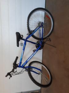 "Boy's Bike 24"" tires"