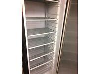 Freezer Industrial size